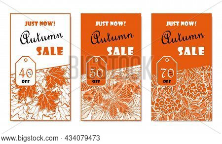 Autumn Sale Banner With Fallen Maple And Horse Chestnut Leaves And Rowan Branches That Says Just Now