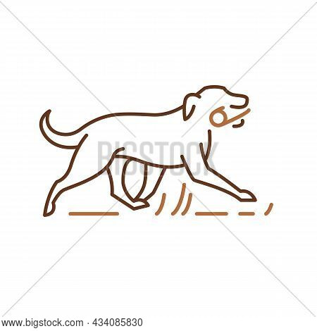 Running Dog Icon, Pets Symbol, Retriever Playing With Stick. Outline Vector Illustration For Logo Id
