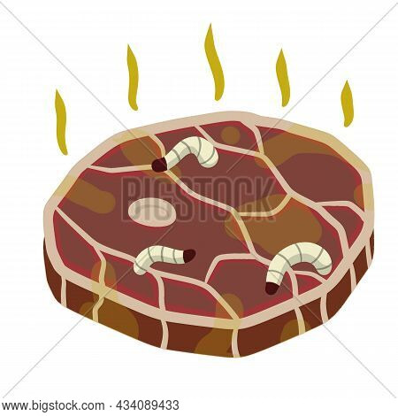 Rotten Meat. Stinky Food. Maggot Worms. White Insect Caterpillars On Meal. Health Hazard. Cartoon Fl
