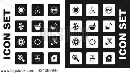 Set No Gmo, Mortar And Pestle, Hemoglobin, Molecule, Test Tube Flask, Stomach With Magnifying Glass,