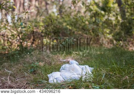 Diapers Waste, Dirty Diapers In Nature. Disposing Of Used Baby Nappies. Environmental Impact Of Disp