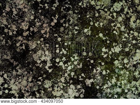 Olive Brown Green Vintage Background With Spots, Splashes And Dots. Watercolor Texture With Blur And