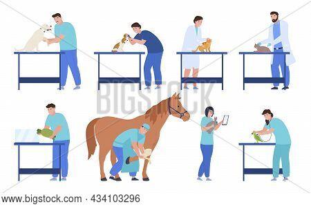 Professional Veterinarians Set Vector Flat Illustration Man And Woman Doctors Examining Animals
