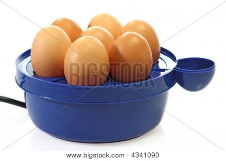 Egg Broiler