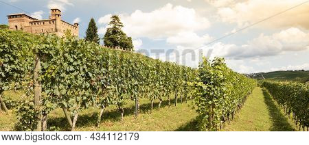 Vineyard In Piedmont Region, Italy, With Grinzane Cavour Castle In The Background. The Langhe Is The