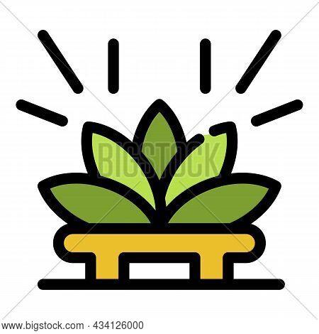 Lotus Tea Ceremony Icon. Outline Lotus Tea Ceremony Vector Icon Color Flat Isolated