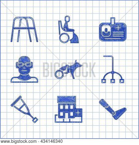 Set Dog In Wheelchair, Medical Hospital Building, Prosthesis Leg, Walking Stick Cane, Crutch Or Crut