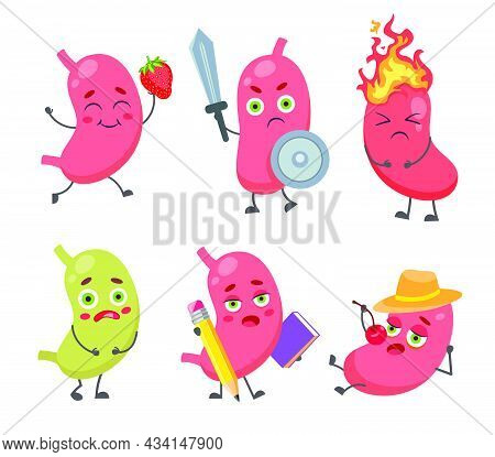 Set Of Cute, Funny Stomach Character. Cartoon Vector Illustration. Healthy And Unhealthy Digestive H