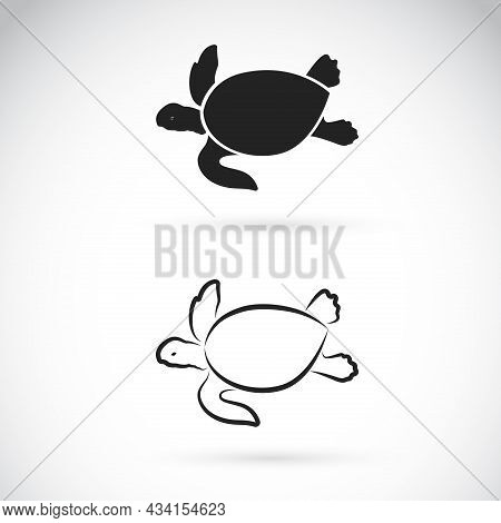 Vector Of Two Turtle Design On White Background. Easy Editable Layered Vector Illustration. Wild Ani