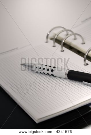 Agenda, Diary