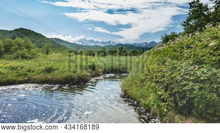 A Natural Hot Spring In The Middle Of A Green Meadow. Lush Green Grass And Wildflowers. Bubbles And