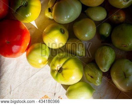 Unripe Green Tomatoes Spread Out On The Table. Top View, Flat Lay
