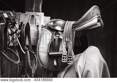 A Black-and-white Image Of A Leather Saddle With Buckles On The Straps, Bridle Reins And Stirrups Ha
