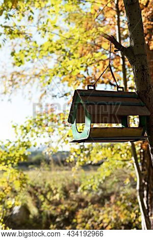 Wooden Bird Feeder Hanging On Tree Branch In Autumn Forest, Fall Season Help And Caring For Birds, B