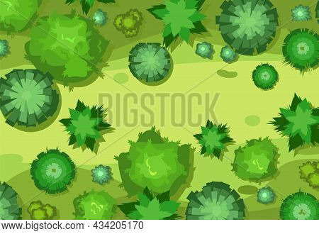 Natural Landscape. View From Above. Glade. Green Crowns Of Trees And Bushes. Deciduous Forest. Top V