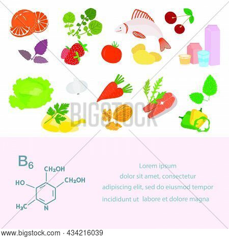 Vector Illustration Vitamin B6 Sources. Healthy Food Essential For Protein Metabolism Enriched With