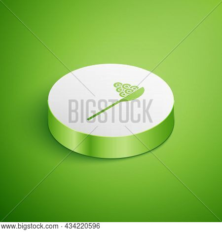 Isometric Caviar On A Spoon Icon Isolated On Green Background. White Circle Button. Vector.