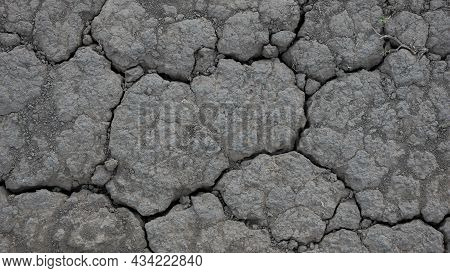 The Theme Of Drought And Lost Crops. Close-up Of Dry Dead Soil In Summer After Sweltering Heat. Natu