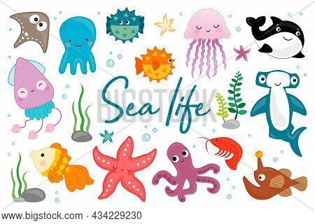 Sea Life. Fish, Jellyfish, Hammerhead Shark, Squid, Octopus, Whale, Starfish. Large Set Of Cartoon S