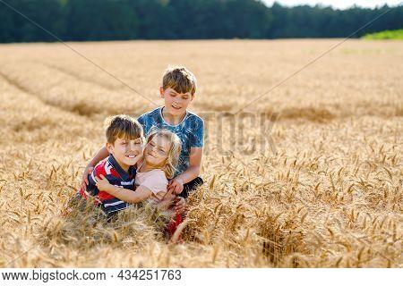 Two School Kids Boys And Little Sister, Preschool Girl Hugging On Wheat Field. Three Happy Children