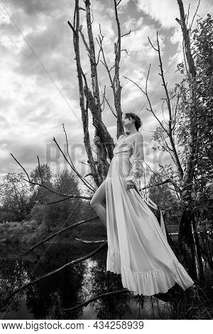 Fantastic Fairy Beautiful Woman In White Long Dress On Old Dry Tree. Girl Princess In Swamp. Fashion