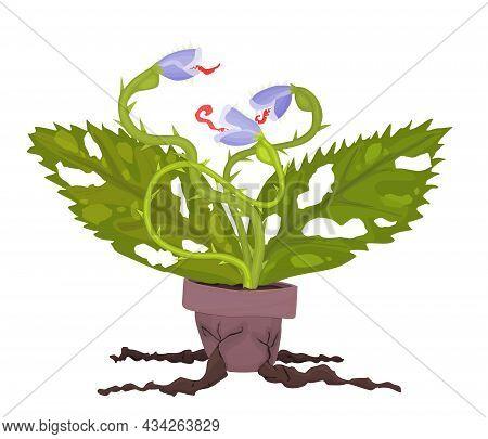 Dangerous Plants Carnivorous Plant Vector Dragon New
