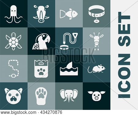Set Pig, Rat, Giraffe Head, Fish, Macaw Parrot, Turtle, Octopus And Collar With Name Tag Icon. Vecto