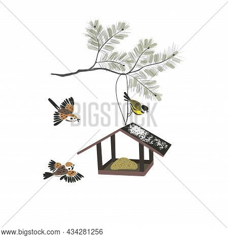 Bird Feeders Isolated On A White Background. Feeding Birds In Winter. Birds Fly To Food. Tits And Sp