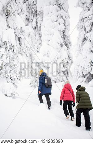 Back view of family father and kids hiking in beautiful winter forest in Lapland Finland