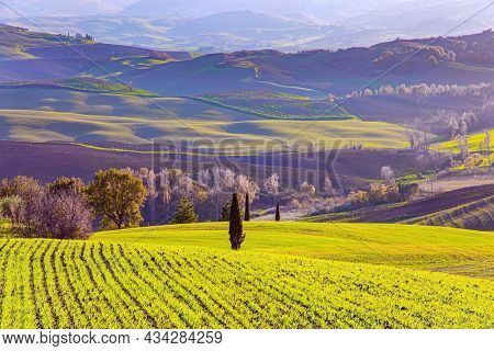 The magnificent Italian province of Tuscany. Fields and hills covered with light fog. Travel to a fabulousl land. The picturesque green hills of Sunny warm winter. December.