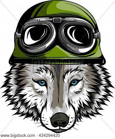 Vector Illustration Of Head Wolf With Helmet