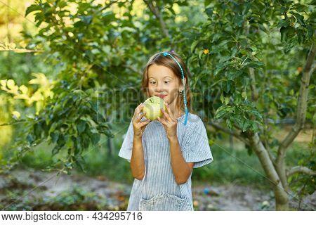 Cute Little Girl Eat Green Apple In Home Garden Outdoor, Happy Child