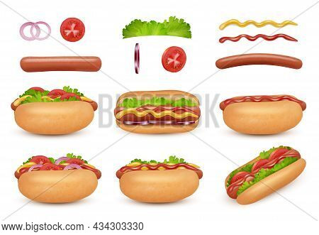 Hot Dog Realistic. Fast Food Ingredients Sausage Tomato Onion Ketchup Mayonez Sauce Salad Decent Vec
