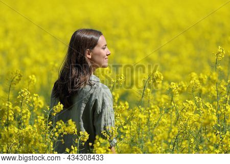Happy Woman Contemplating Views In A Yellow Field A Sunny Day