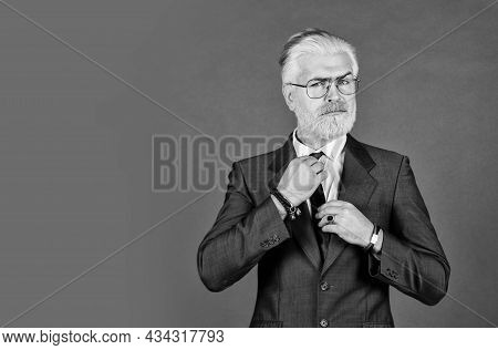 Perfect Male. Confident Businessman Wear Glasses. Mature Man Dyed Beard And Hair. Grooming For Forma