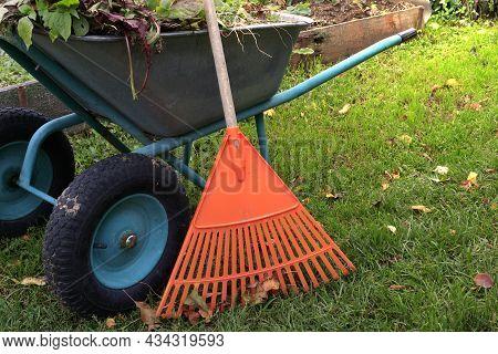 Garden Work, Garden Rake And Wheelbarrow In The Garden. The Concept Of Garden Work On Harvesting Fol