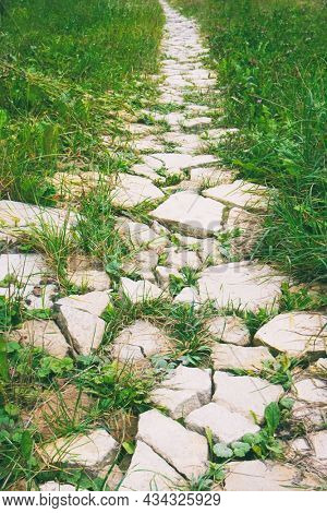Pathway lined with stones and grass growing through stones