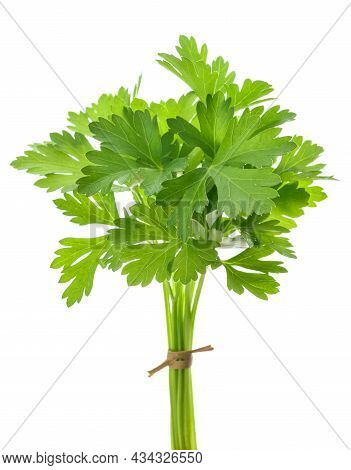 Bunch Of Tied Parsley Isolated On White Background