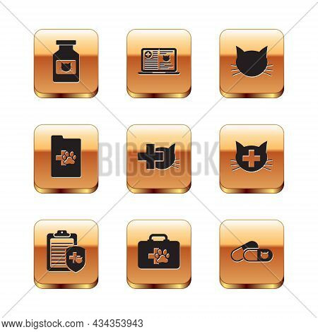 Set Cat Medicine Bottle, Clinical Record Pet, Pet First Aid Kit, Veterinary Clinic, And Icon. Vector