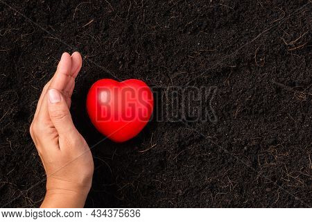 Top View Of Farmer Woman Hand Holding Red Heart On Compost Fertile Black Soil Background And Copy Sp