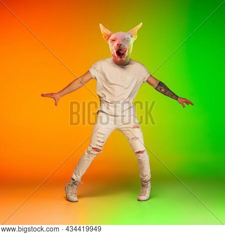 Contemporary Collage With Young Man, Hip Hop Dancer Headed Of Cats Head Dancing Isolated Over Gradie