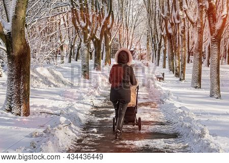 A Young Mother Walking With Baby Carriage In Winter Park. Girl With A Stroller Goes On The Road In W