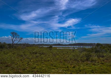 An Isolated Tree Stands Guard Under Blue Sky And Swirling Clouds Near The Life Of The Marsh Trail, A