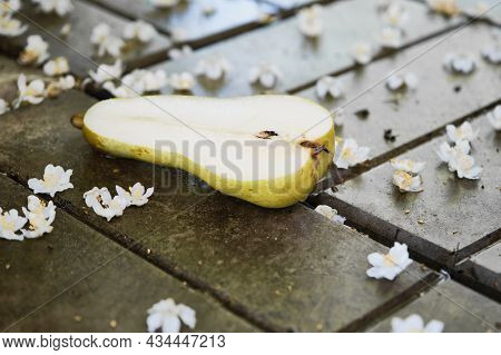 Pear Fruit, Cut In Half, Lies On Wet Stones Among White Flowers Of Actinidia. Concept Of Healthy Eat