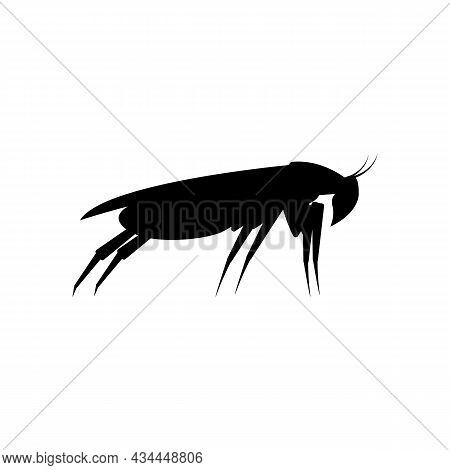 Black Silhouette Of A Cockroach. Side View. Vector Clipart And Illustration On White Background.