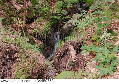 A Small Stream Flowing On The Rocky Ground, Flowing Down The Slope Of The Mountain. Crystal Clear Wa