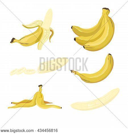 Yellow Bananas Vector Illustration Set. Tropical Fruit, Exotic Plant, Healthy Natural Dessert, Whole