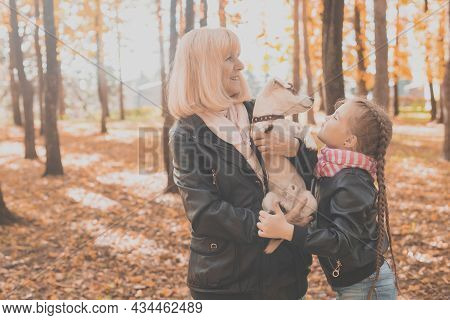 Grandmother With Granddaughter In Autumn Park, Girl Hugging Grandmother And Her Jack Russell Terrier