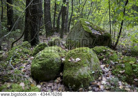 A Large Stone In The Forest, Covered With Green Moss And Autumn Foliage. Fairy Tale Group, A Pile Of