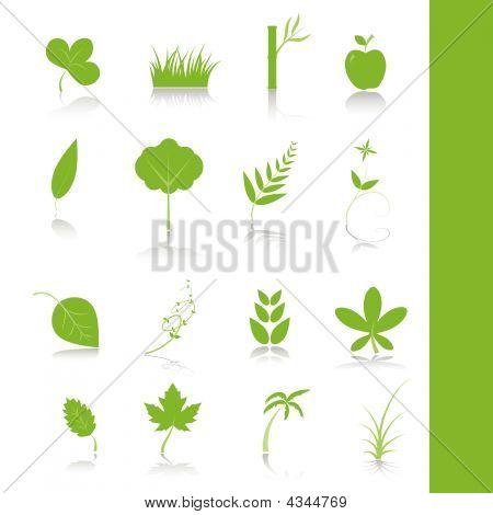 Green Plants Icon Symbol Set